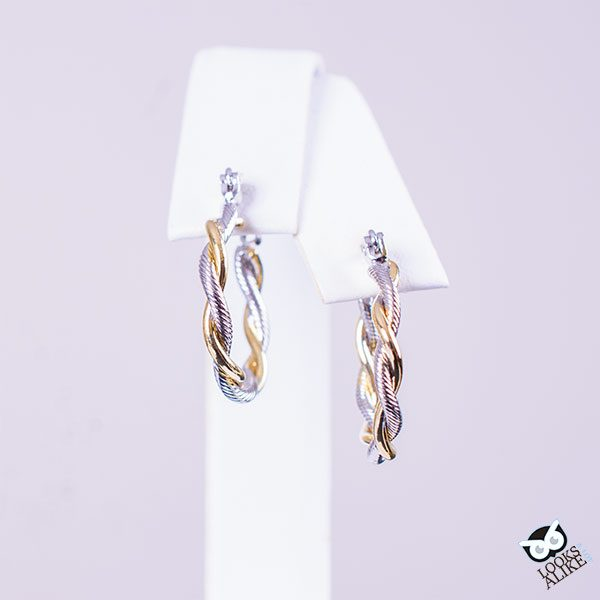 Stunning Two-tone earrings